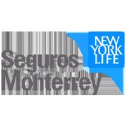 Seguros Monterrey New York Life - Ginecólogo en Naucalpan